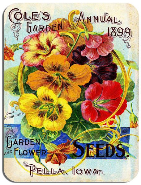 Vintage Cole's 1899 Garden Seed Art Advert Mouse Mat. Gardener Flowers Mouse Pad