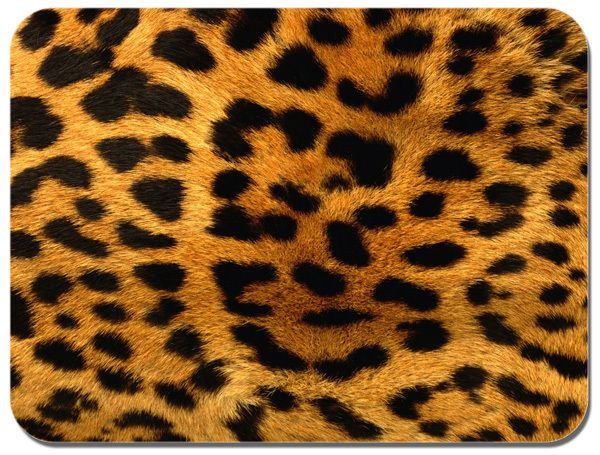 Leopard Skin Mouse Mat. Animal Print Mouse Pad