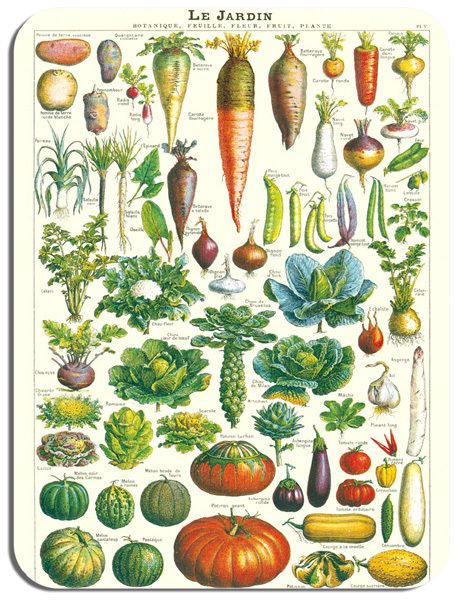 Vintage French Vegetable Chart Mouse Mat. Gardeners Poster Mouse Pad Gift Legume